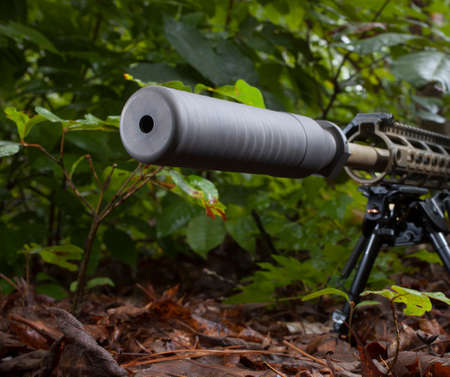silencer: Modern sporting rifle with a silencer in the trees