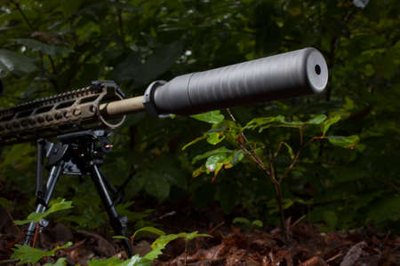 the silencer: Semi automatic rifle with a silencer in a darkening forest Stock Photo