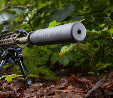 the silencer: Silencer on the end of a rifle barrel that is in some trees