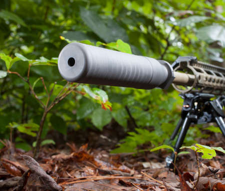 suppressor: Rifle with a suppressor that is in a bunch of trees