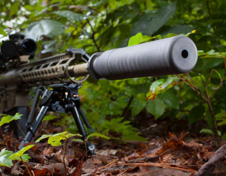 the silencer: Silencer on a rifle that is in a bunch of brush