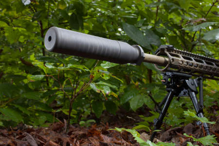 silencer: Semi automatic rifle in the brush with a silencer on the barrel