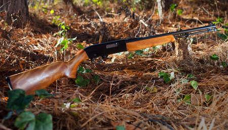 gatillo: rifle de percusión anular que se dispara con cada apretón del gatillo en un suelo del bosque Foto de archivo