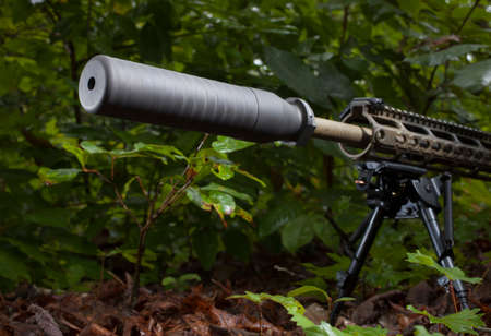 the silencer: Silencer on a modern semi automatic rifle in the bushes Stock Photo