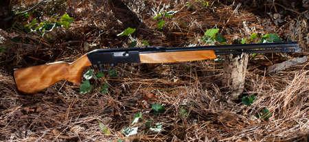 twenty two: Long rifle that runs rimfire twenty two on a forest floor