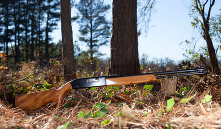 semi automatic: Semi automatic rifle in the forest with trees and sky