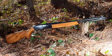 twenty two: Rifle that is for rimfire twenty two ammunition on a forest floor
