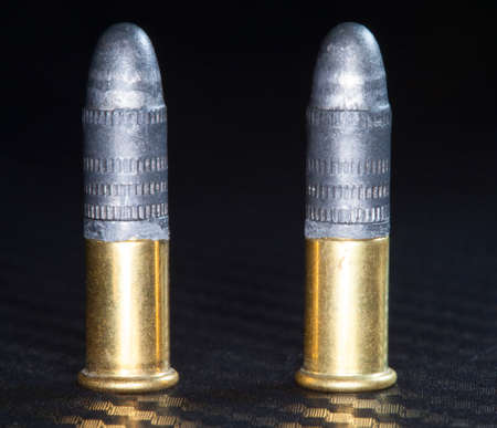 twenty two: Ammuntion that is designed for twenty two caliber firearms