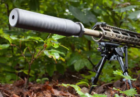 suppressor: Suppressor mounted on a modern sporting rifle in the trees