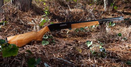 twenty two: Wood stocked twenty two rifle on the forest floor Stock Photo