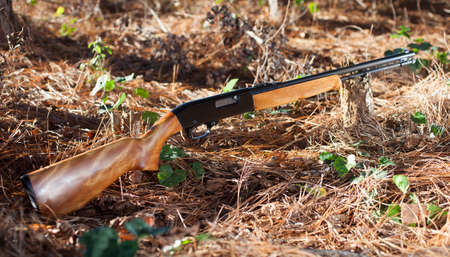 semi automatic: Firearm that shoots rimfire ammunition with pine needs and trees around