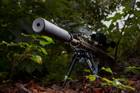 suppressor: Rifle with a suppressor mounted that is in the trees