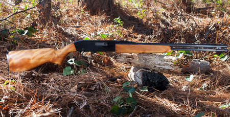 chambered: Gun in a forest that is chambered for twenty two rimfire Stock Photo