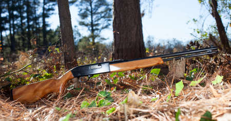 semi automatic: Rifle that is semi automatic that shoots rimfire ammunition in a forest
