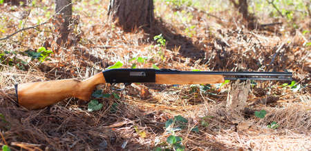 twenty two: Weapon that is chambered in twenty two that is on the floor of a forest
