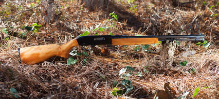 twenty two: Rimfire rifle for twenty two that is on a forest floor