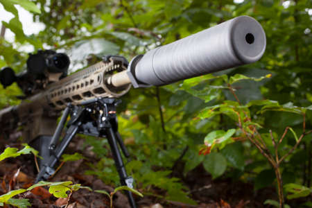 the silencer: Modern semi automatic rifle that has a silencer attached in the trees