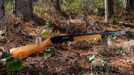 semi automatic: Semi automatic rimfire rifle in the forst with trees