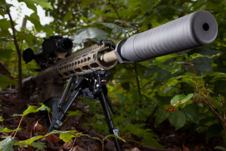 the silencer: Silencer on the end of a semi automatic rifles in the bushes
