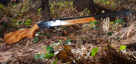 semi automatic: Rimfire rifle that is reflecting light on a forest floor