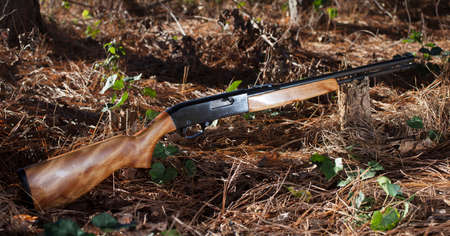 twenty two: Firearm that shoots twenty two ammunition in a forest Stock Photo