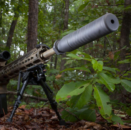 the silencer: Silencer on a modern sporting rifle that is in the trees