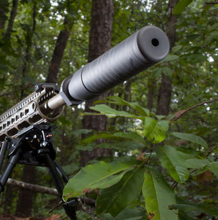 suppressor: Modern sporting rifle in a forest with a suppressor mounted