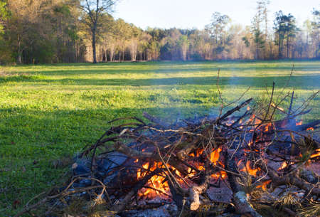 limbs: Brush and limbs being burned near a green field