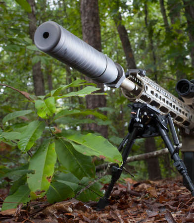 suppressor: Suppressor that is mounted on a modern sporting rifle in the woods