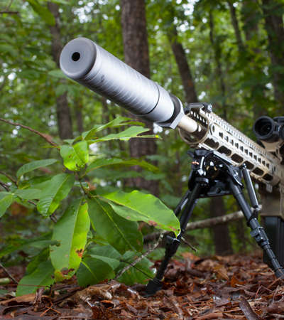 Suppressor on a modern sporting rifle in the bushes