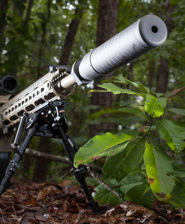 the silencer: Silencer on the end of a modern sportiong rifle in the forest