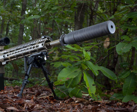 suppressor: Modern sporting rifle with a suppressor mounted in the forest