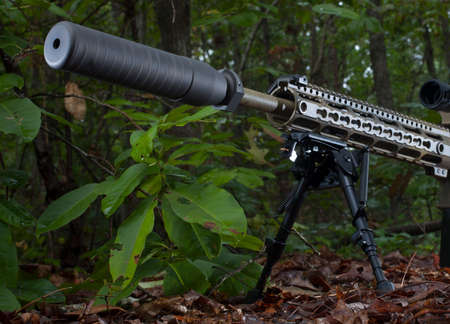 suppressor: Modern sporting rifle with a suppressor on in the forest