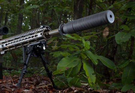 Silencer on a semi automatic rifle in the forest 版權商用圖片 - 56871511