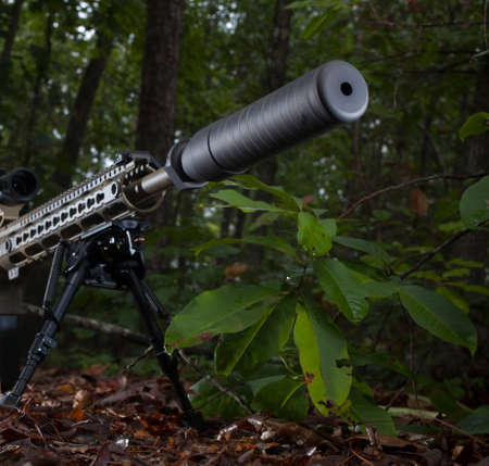 the silencer: Silencer at the end of a rifle that is in a bunch of trees