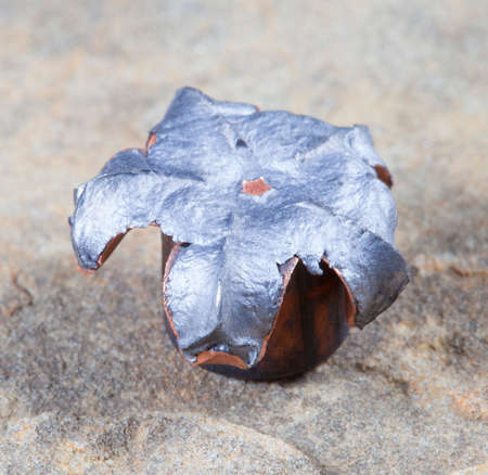 Hollow point bullet that has taken the shape of a mushroom after impact Stockfoto