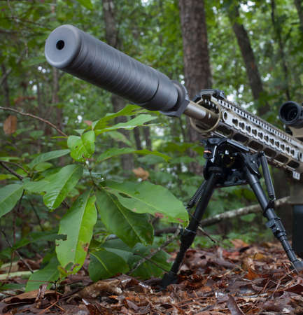 the silencer: Silencer mounted on a semi automatic rifle in a forest