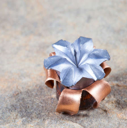 expanded: Copper jacketed hollow point that has expanded on impact Stock Photo