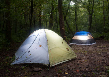 pitched: Two tents pitched in a dark forest in North Carolina