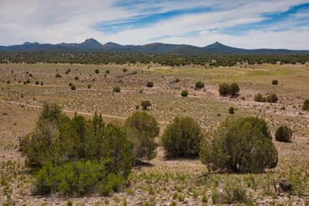 프레스콧 아리조나 근처의 높은 사막 풍경 스톡 콘텐츠