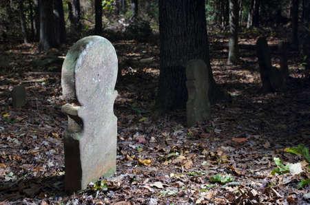 오래 된 스코틀랜드 묘지에서 거의 200 세 headstones