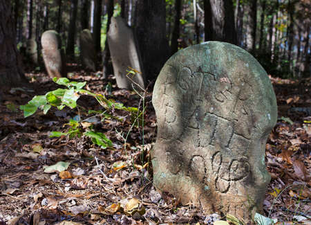 노스 캐롤라이나에있는 Old Scottish Cemetery에있는 마커 스톡 콘텐츠