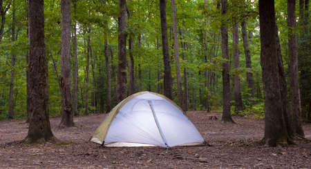 campsite: Tent in Uwharrie National Forest as night is about to fall