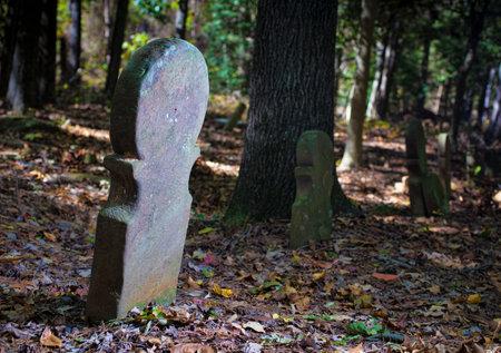 Moore 군 노스 캐롤라이나에있는 오래된 스코틀랜드 묘지 에디토리얼