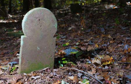 노스 캐롤라이나에있는 오래된 스코틀랜드 묘지의 무덤 표식에 거미