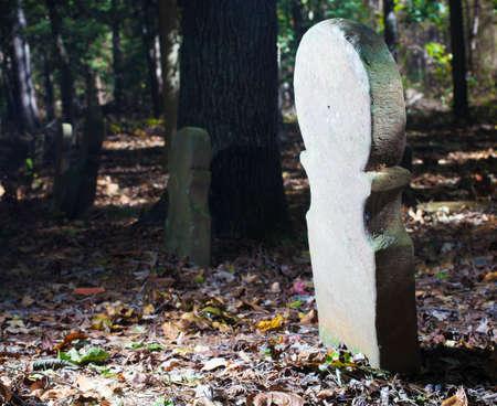 노스 캐롤라이나에있는 오래된 스코틀랜드 묘지에 줄에있는 삭제 표시 스톡 콘텐츠
