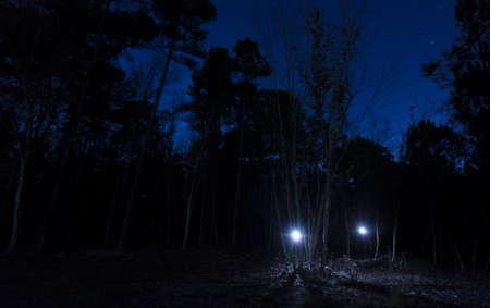Pair of flashlights coming out of a North Carolina woods with stars above Stock Photo