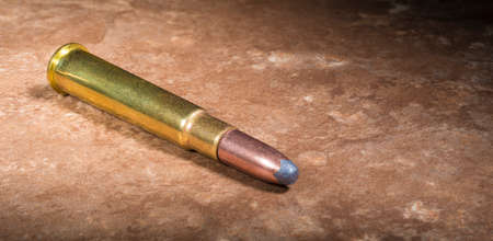 Cartridge that was used in 303 chambered rifles on a beige background