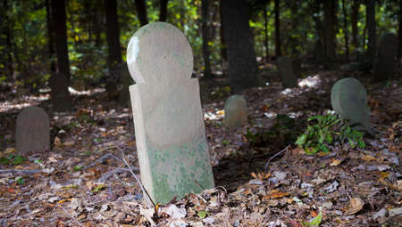 Old stone grave markers in Old Scottish Cemetery in North Carolina 写真素材