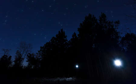 Pair of headlamps in the dark woods with stars in the sky above